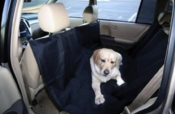 Dog hammock